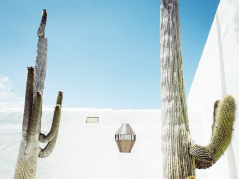 Lanzarote_Michael Clement 8