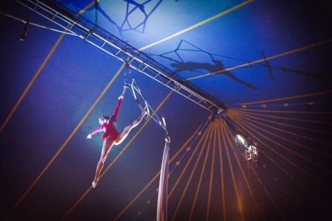 Michael Clement_Circus 8