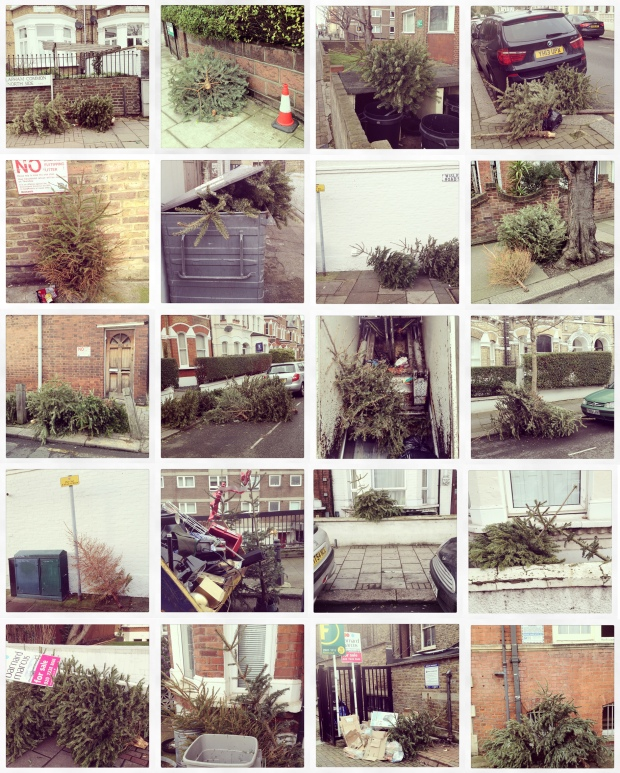Discarded Christmas trees 2015